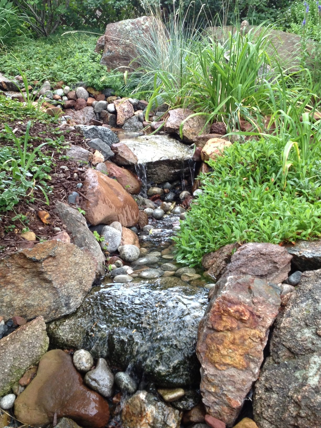 Creek flow thru gardens