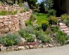 Gillatt-Stone-Walls-and-Planting-(large)