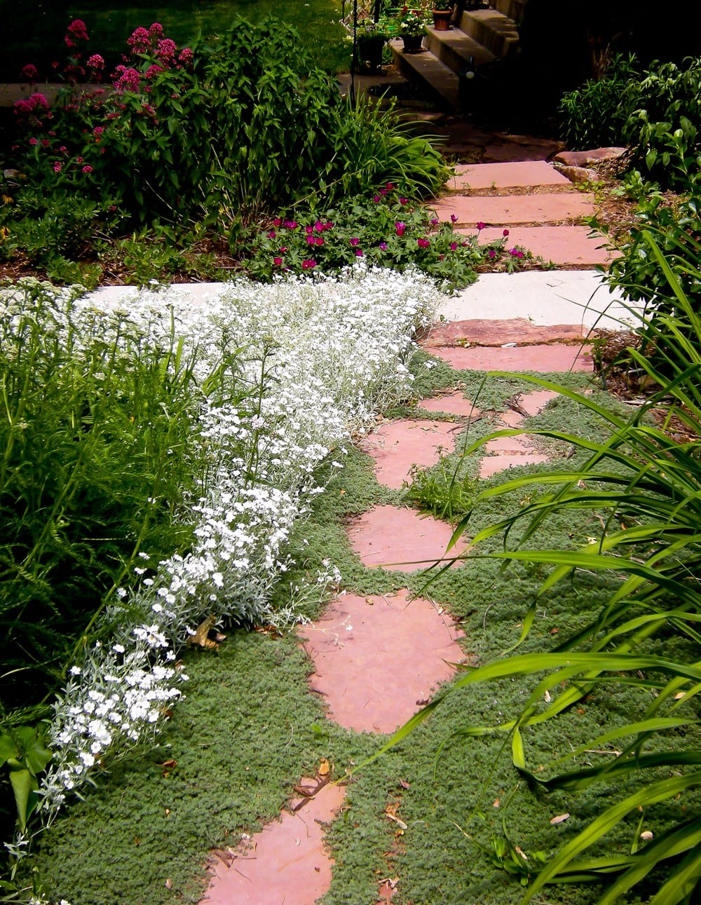 Swearingen-Perennial-bed-and-flagstone-(large)