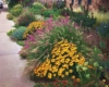 pollinator friendly raised flower bed
