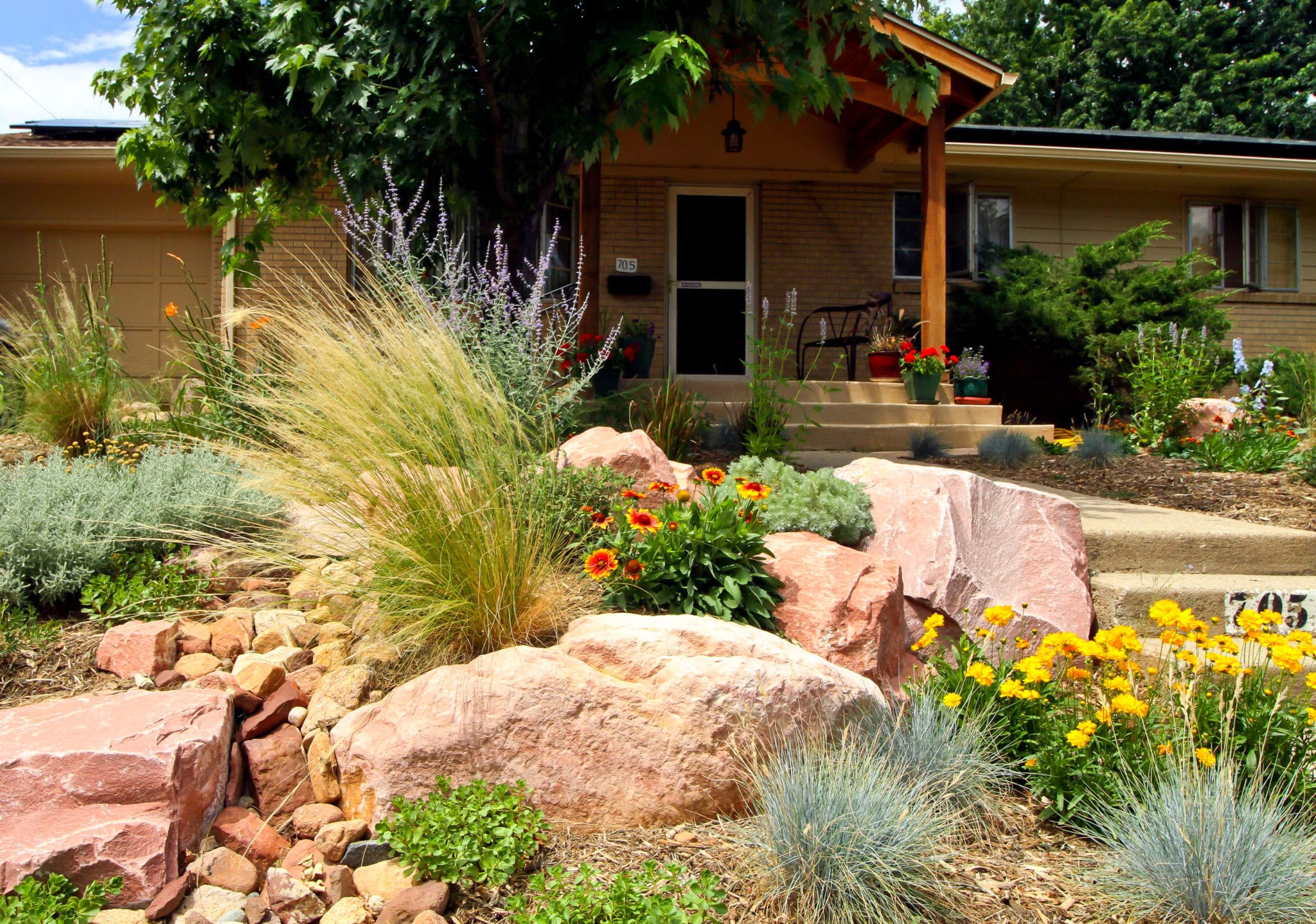 xeriscaping Archives - Ecoscape Design on texas rock garden designs, desert rock garden designs, perennials rock garden designs, succulent rock garden designs, contemporary rock garden designs, japanese rock garden designs, zen rock garden designs, cottage rock garden designs, plants rock garden designs, modern rock garden designs, easy rock garden designs, shade rock garden designs,