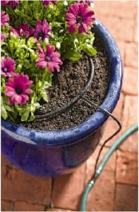 Drip circle for container-photo