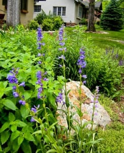 Swearingen Perennial bed (small)